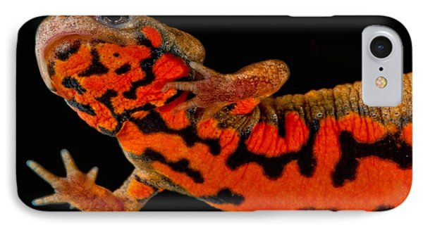Chuxiong Fire Belly Newt IPhone 7 Case by Dant� Fenolio