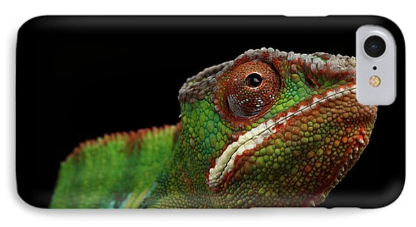 Closeup Head Of Panther Chameleon, Reptile In Profile View Isolated On Black Background IPhone 7 Case by Sergey Taran