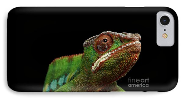 Closeup Head Of Panther Chameleon, Reptile In Profile View Isolated On Black Background IPhone Case by Sergey Taran