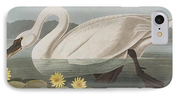 Common American Swan IPhone Case by John James Audubon