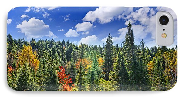 Fall Forest In Sunshine IPhone Case by Elena Elisseeva