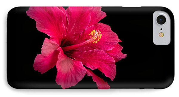 Floating  Hibiscus IPhone Case by Robert Bales
