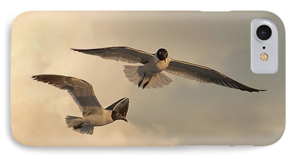 Gliders IPhone Case by Don Spenner