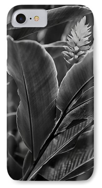 I See You IPhone Case by Jon Glaser