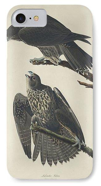 Labrador Falcon IPhone 7 Case by John James Audubon