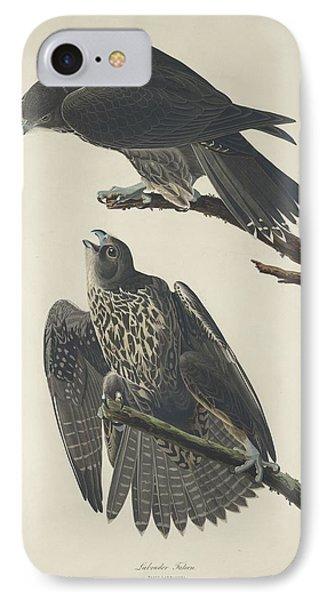 Labrador Falcon IPhone Case by John James Audubon