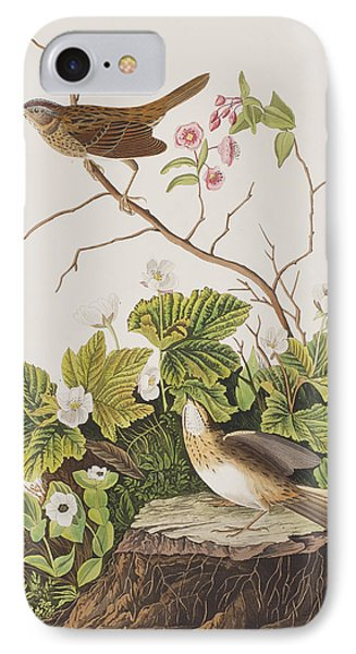 Lincoln Finch IPhone Case by John James Audubon