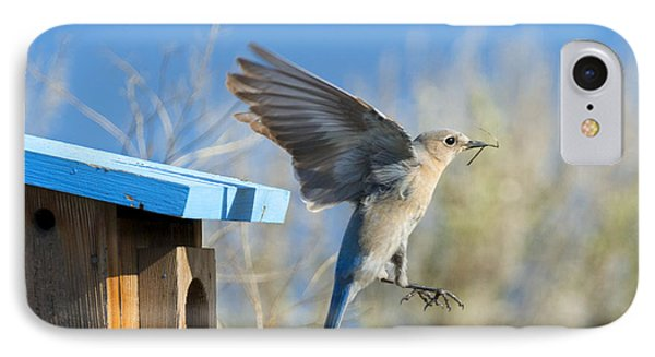 Nest Builder IPhone Case by Mike Dawson