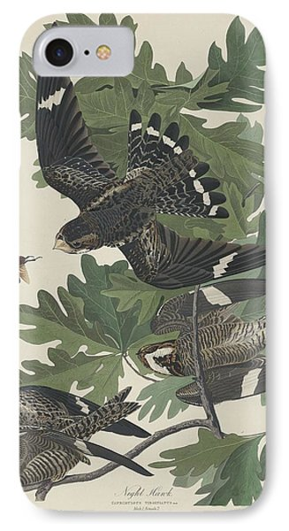 Night Hawk IPhone Case by John James Audubon