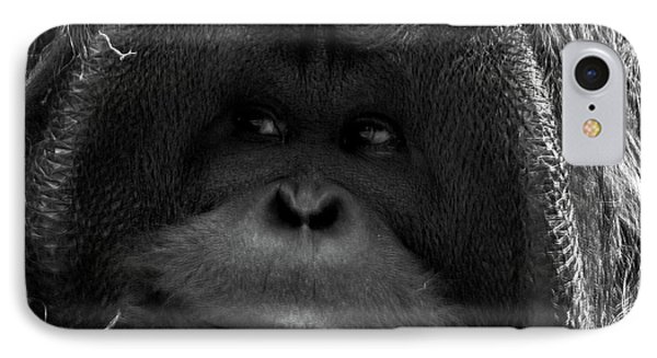 Orangutan IPhone 7 Case by Martin Newman