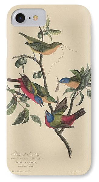 Painted Bunting IPhone Case by John James Audubon
