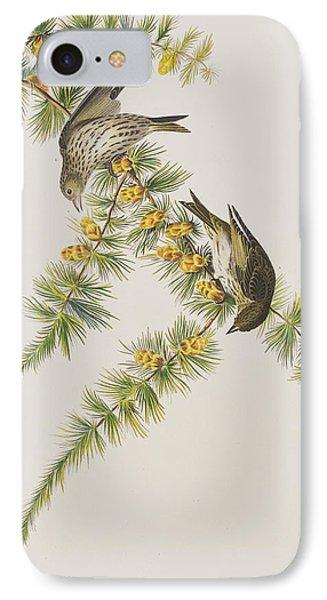 Pine Finch IPhone Case by John James Audubon