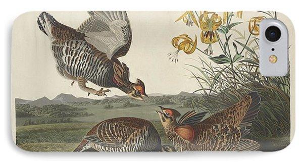 Pinnated Grouse IPhone Case by John James Audubon
