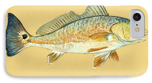 Redfish Painting IPhone Case by Juan  Bosco