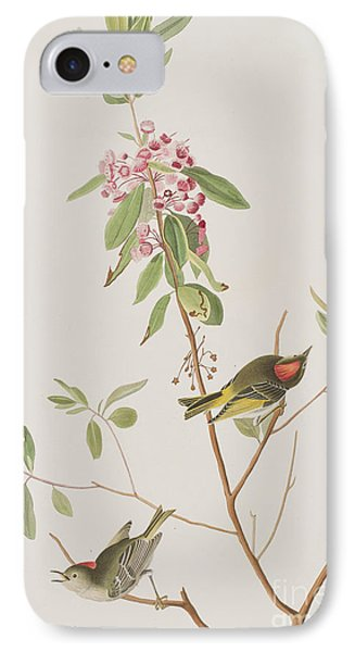 Ruby Crowned Wren IPhone 7 Case by John James Audubon