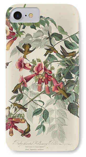 Ruby-throated Hummingbird IPhone 7 Case by John James Audubon