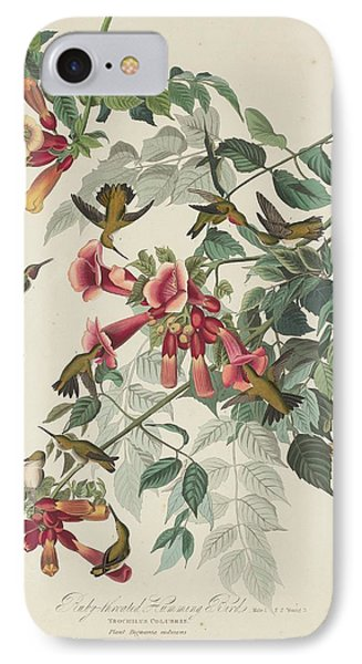 Ruby-throated Hummingbird IPhone Case by John James Audubon