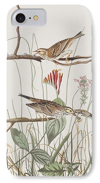 Savannah Finch IPhone Case by John James Audubon