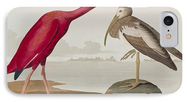 Scarlet Ibis IPhone Case by John James Audubon