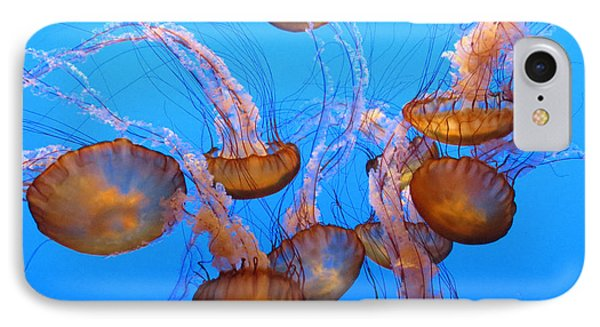 Sea Nettles Ballet 1 Phone Case by Diane Wood