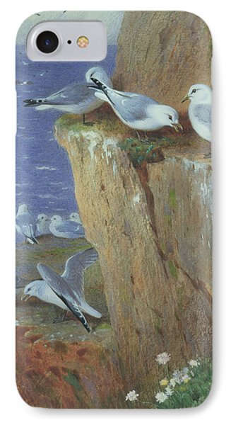 Seagulls IPhone Case by Archibald Thorburn