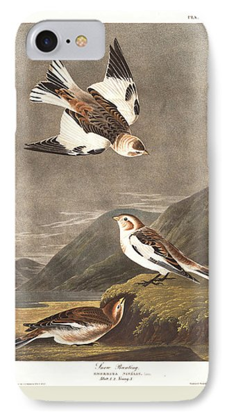 Snow Bunting IPhone 7 Case by John James Audubon