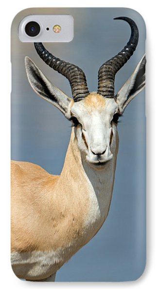 Springbok Antidorcas Marsupialis IPhone Case by Panoramic Images
