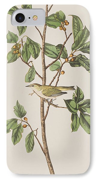 Tennessee Warbler IPhone Case by John James Audubon