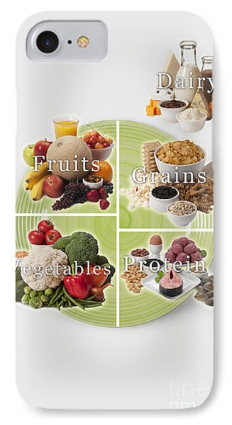 Usda Myplate IPhone Case by George Mattei