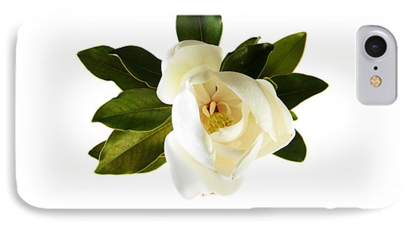 White Magnolia Flower And Leaves Isolated On White  Phone Case by Michael Ledray