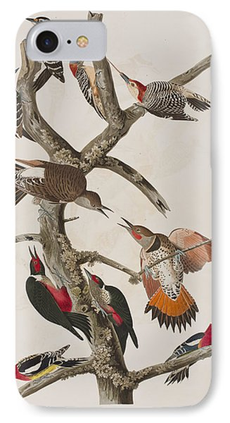 Woodpeckers IPhone Case by John James Audubon