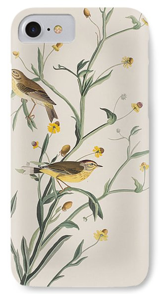Yellow Red-poll Warbler IPhone 7 Case by John James Audubon