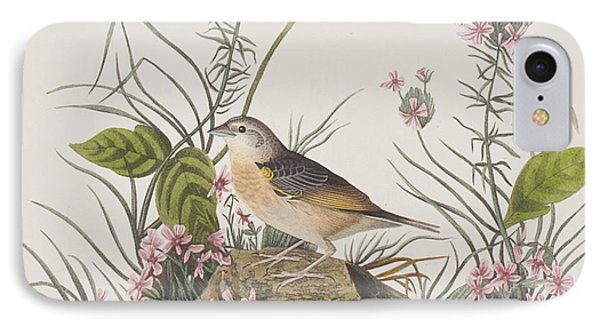 Yellow-winged Sparrow IPhone Case by John James Audubon