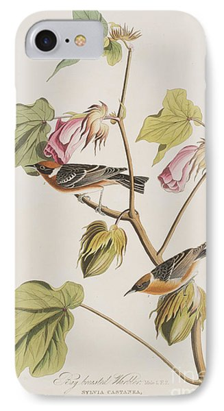 Bay Breasted Warbler IPhone 7 Case by John James Audubon