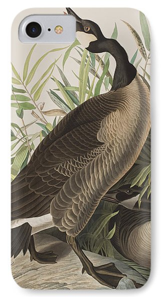 Canada Goose IPhone Case by John James Audubon