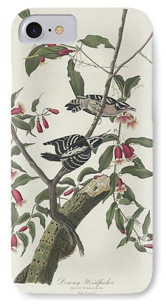 Downy Woodpecker IPhone Case by John James Audubon