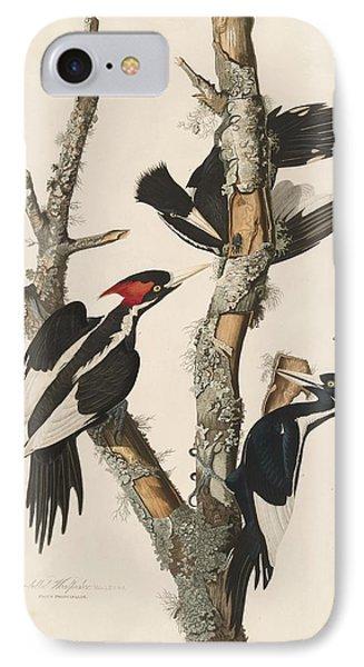 Ivory-billed Woodpecker IPhone Case by John James Audubon