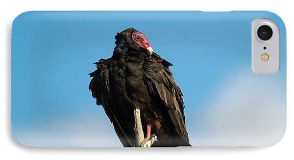 Looking For A Meal IPhone 7 Case by Mike Dawson