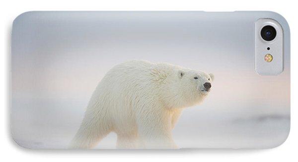 Polar Bear  Ursus Maritimus , Young IPhone 7 Case by Steven Kazlowski