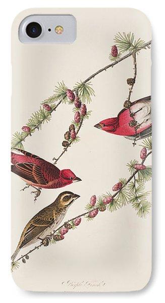 Purple Finch IPhone Case by John James Audubon