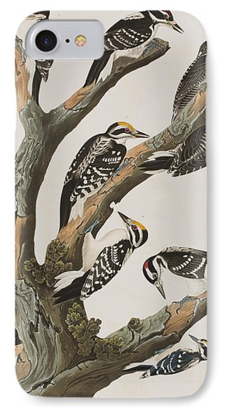 Woodpeckers IPhone 7 Case by John James Audubon