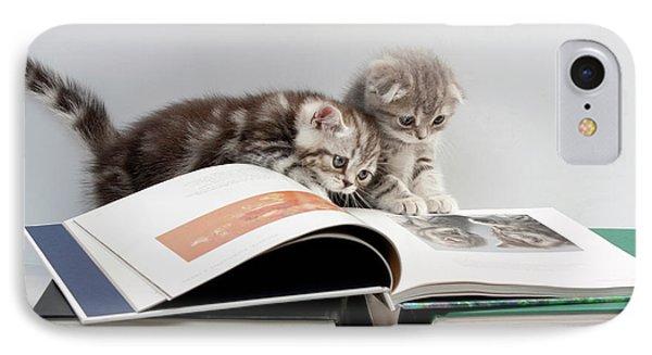 Scottish Fold Cats IPhone Case by Evgeniy Lankin