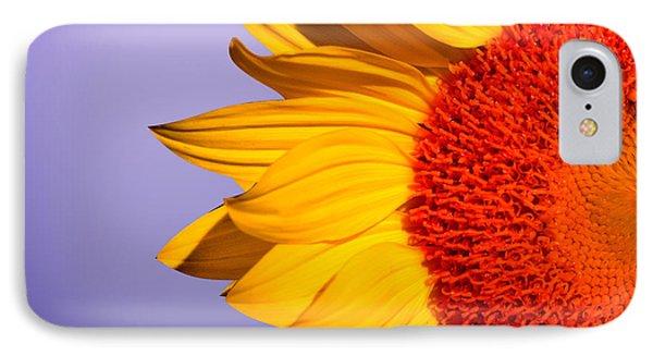 Sunflowers IPhone Case by Mark Ashkenazi