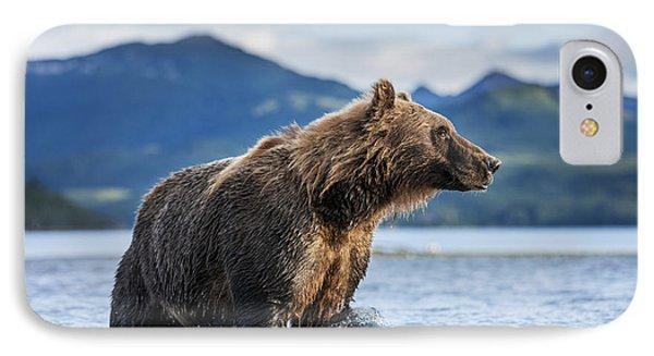 Coastal Brown Bear  Ursus Arctos IPhone 7 Case by Paul Souders
