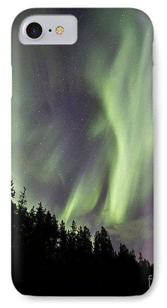 Aurora Borealis Over Trees, Yukon Phone Case by Jonathan Tucker