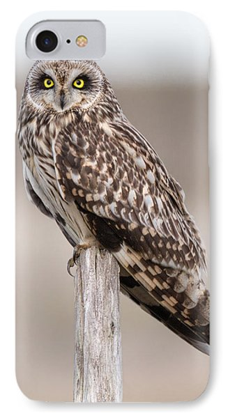 Short Eared Owl IPhone Case by Ian Hufton