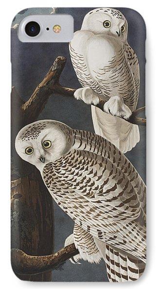 Snowy Owl IPhone 7 Case by John James Audubon