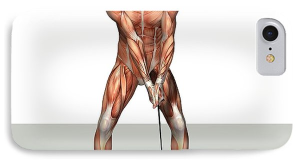 Male Muscles, Artwork IPhone Case by Friedrich Saurer