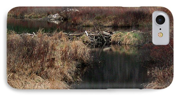 A Beaver's Work IPhone Case by Skip Willits