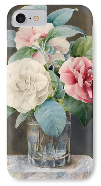 A Cut Glass Vase Containing Camelias IPhone Case by Sarah Bray